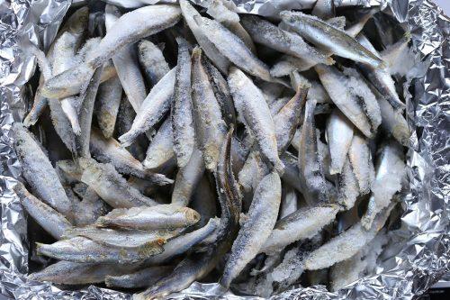 sardinas lanadas