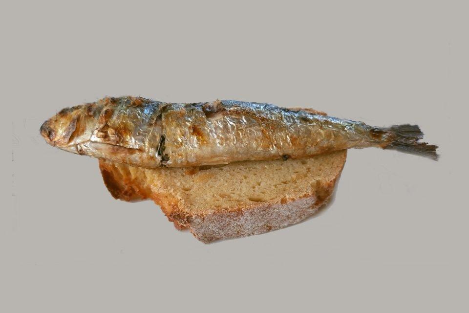 Sardina Asadas
